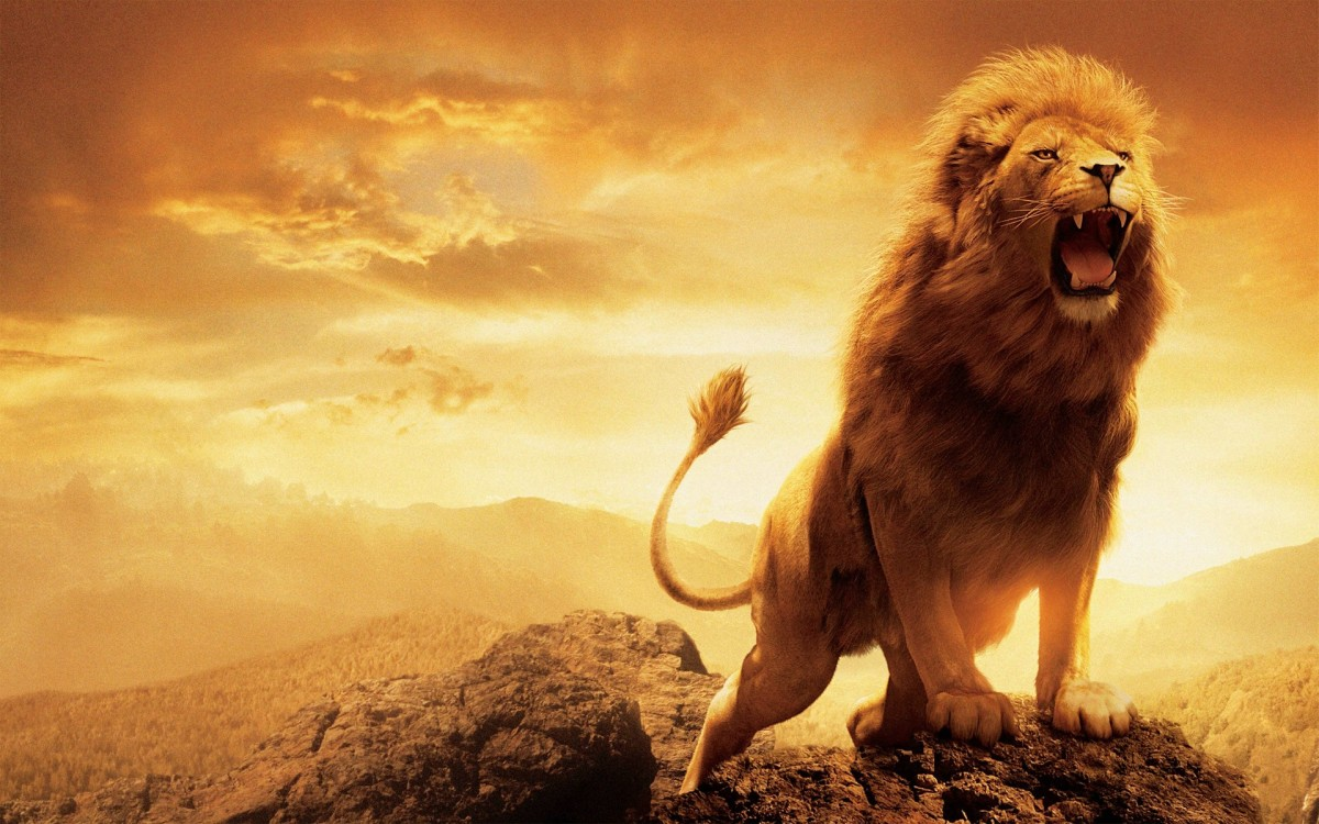 WATCH AND SEE THE LION OF JUDAH ROAR AND REVERSE EVERYTHING!